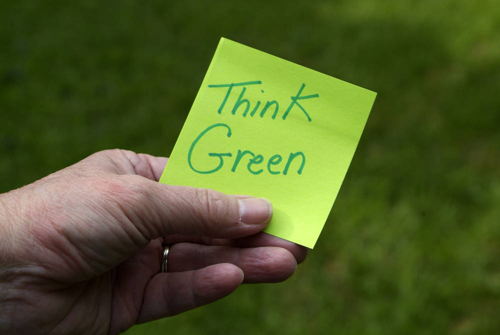 Making a Will the environmentally friendly way